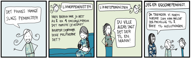 Det finnes mange typer feminister